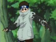 Shino beim Kampf gegen Kankuro